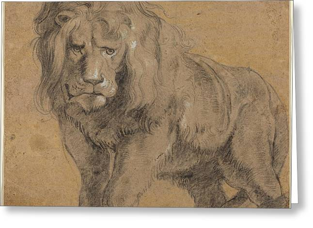 Lion Sketch Greeting Card by Paul Ruebens