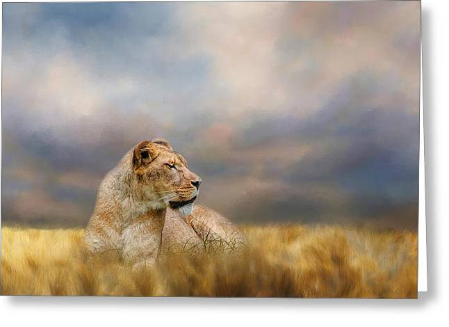 Lioness After The Storm Greeting Card