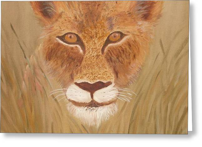 Lioness In Waiting Greeting Card