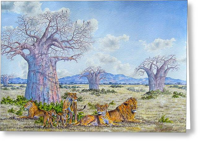 Lions By The Baobab Greeting Card