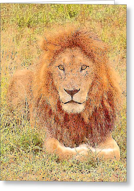 Lion's Eyes Greeting Card by Judi Baker
