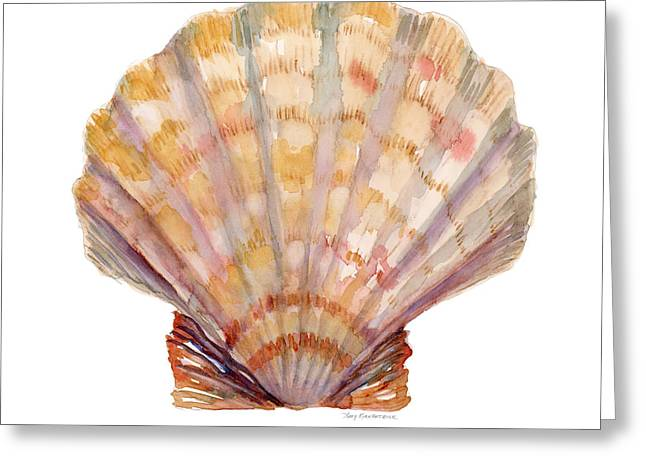 Lion's Paw Shell Greeting Card by Amy Kirkpatrick