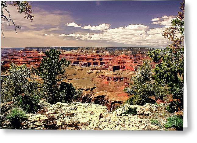 Lipan Point  Grand Canyon Greeting Card by Bob and Nadine Johnston