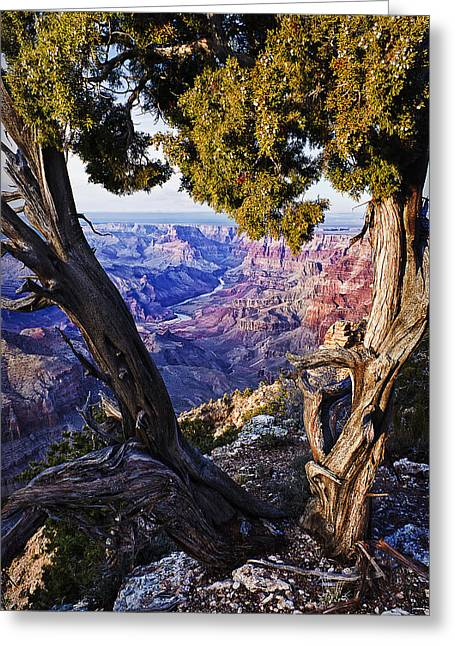 Lipan Point View Greeting Card