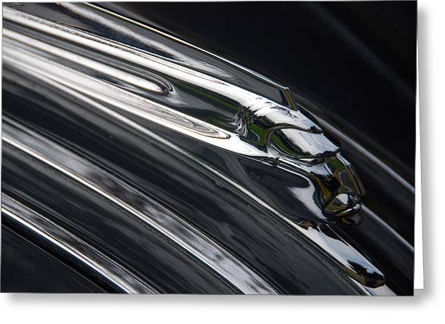 Greeting Card featuring the photograph Liquid Chief by John Schneider
