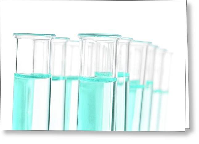 Liquid In Test Tubes In A Rack Greeting Card by Science Photo Library