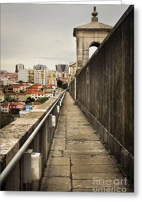 Lisbon Aqueduct Greeting Card by Carlos Caetano