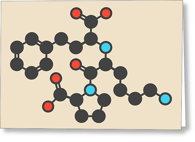 Lisinopril Hypertension Drug Molecule Greeting Card by Molekuul