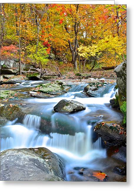 Listen Can You Hear It Greeting Card by Frozen in Time Fine Art Photography