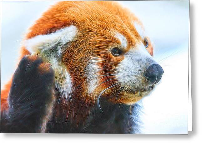 Listening Red Panda Greeting Card