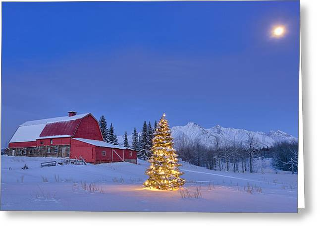 Lit Christmas Tree In A Snow Covered Greeting Card by Kevin Smith