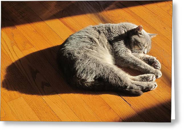 Lit Lounging Lucy Greeting Card by Guy Ricketts