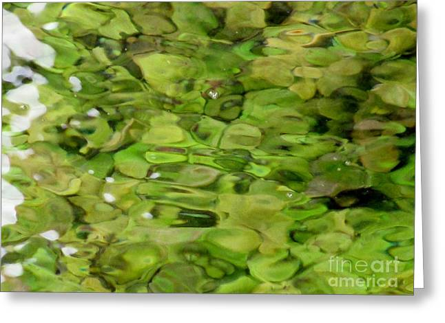 Lite Watery Green Greeting Card