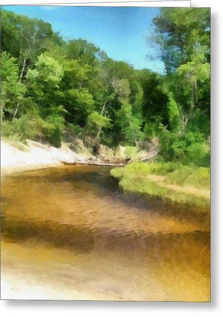 Little Black Creek - Hoffmaster State Park Greeting Card by Michelle Calkins