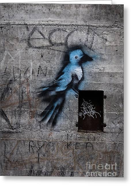 Little Blue Bird Graffiti Greeting Card by Edward Fielding