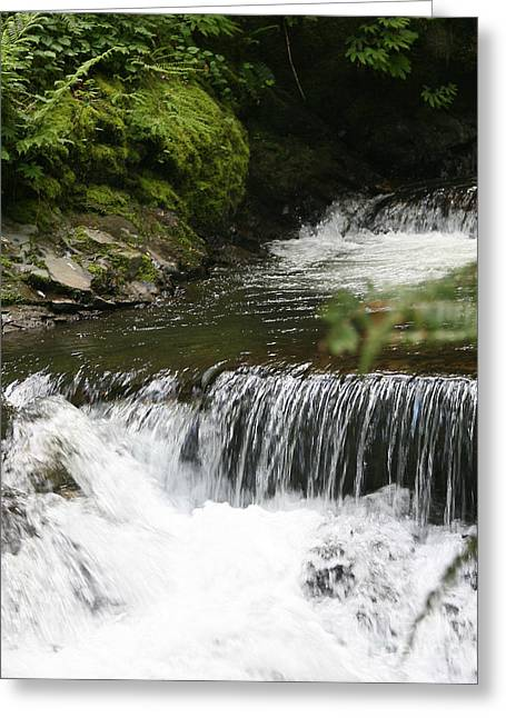 Little Creek Falls Greeting Card