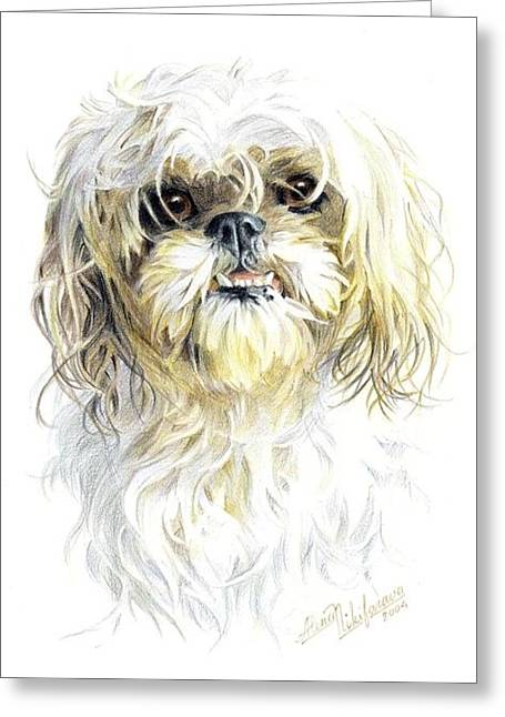 Little Dog. Commission. Greeting Card