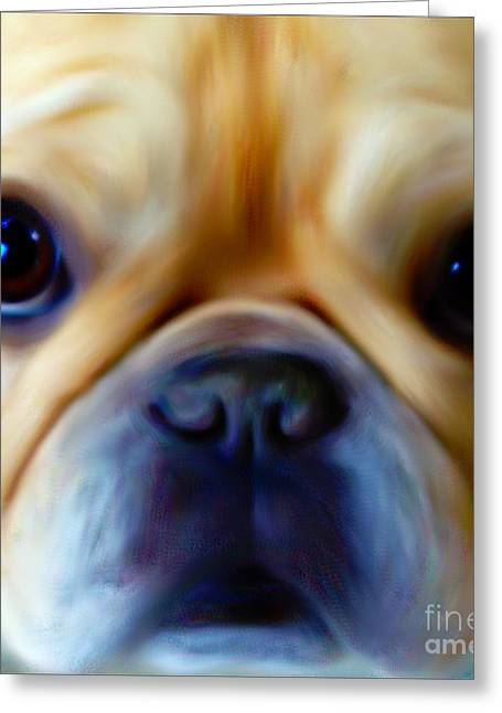 Little Frenchie Face Greeting Card by Barbara Chichester