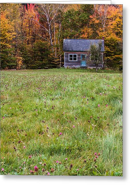 Little House At Woodlands Edge In New Hampshire Greeting Card by Karen Stephenson