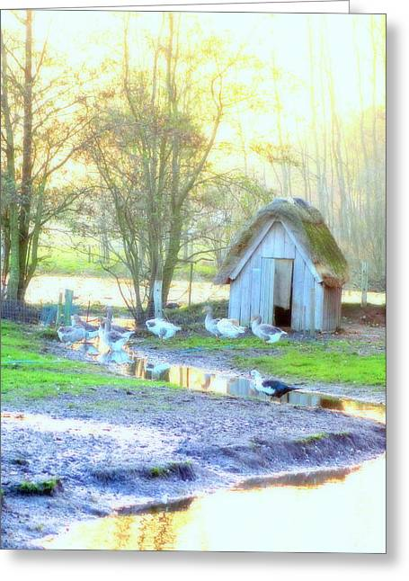 The Little Goose House By The Pond Greeting Card by Hilde Widerberg