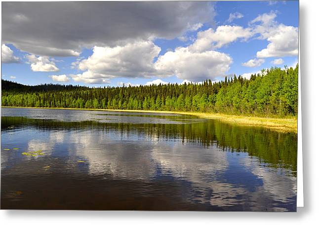 Greeting Card featuring the photograph Little Lost Lake by Cathy Mahnke