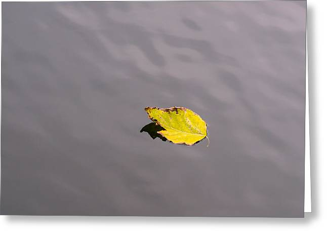 Little Navy - Yellow Submarine - Featured 2 Greeting Card by Alexander Senin