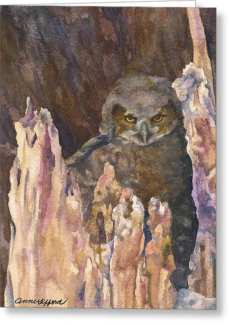 Little Owl Greeting Card by Anne Gifford