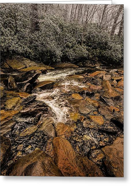 Little Pidgeon River2 Greeting Card by Tom  Reed