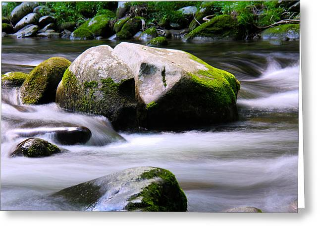 Little Piegon River Gatlinburg Tennessee Greeting Card by Jerome Lynch