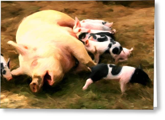 Little Piggies Greeting Card by Michael Pickett