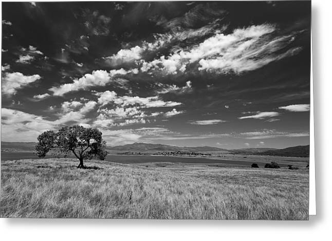 Little Prarie Big Sky - Black And White Greeting Card by Peter Tellone