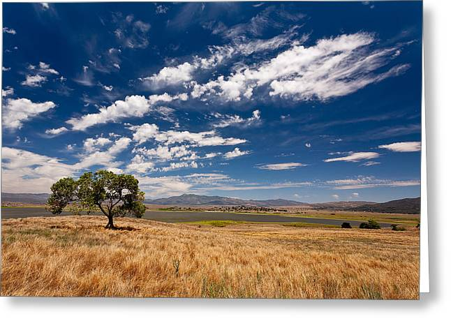 Little Prarie - Big Sky Greeting Card by Peter Tellone