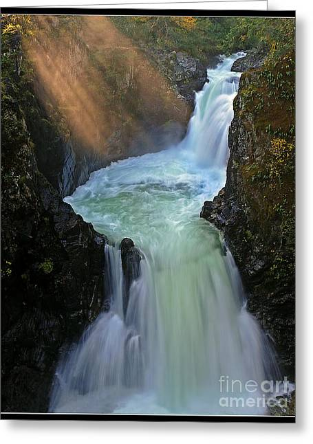Sun Rays Over Little Qualicum Falls Greeting Card by Inge Riis McDonald