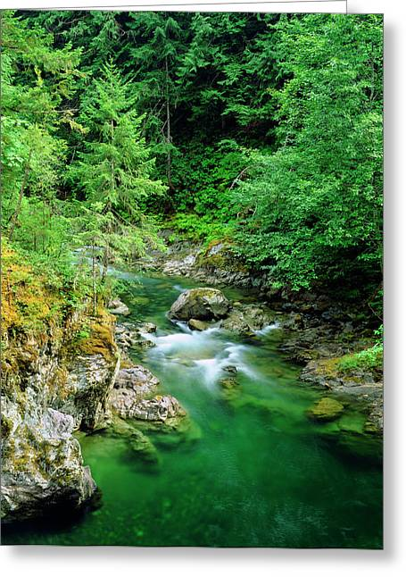 Little Qualicum River On Vancouver Greeting Card