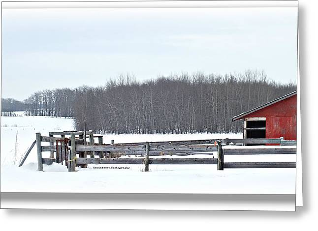 Little Red Barn Greeting Card by Donna Brown