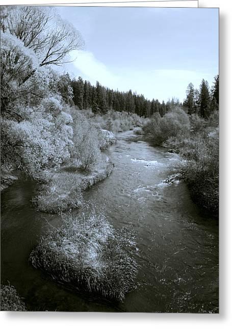 Little Spokane River Beauty Greeting Card by Daniel Hagerman