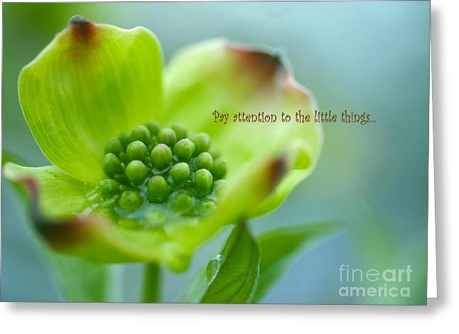 Little Things Greeting Card by Irina Wardas