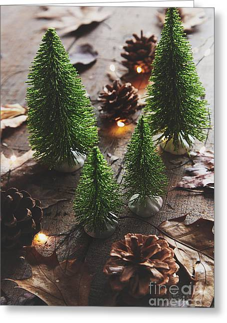 Greeting Card featuring the photograph Little Trees With Pine Cones And Leaves  by Sandra Cunningham