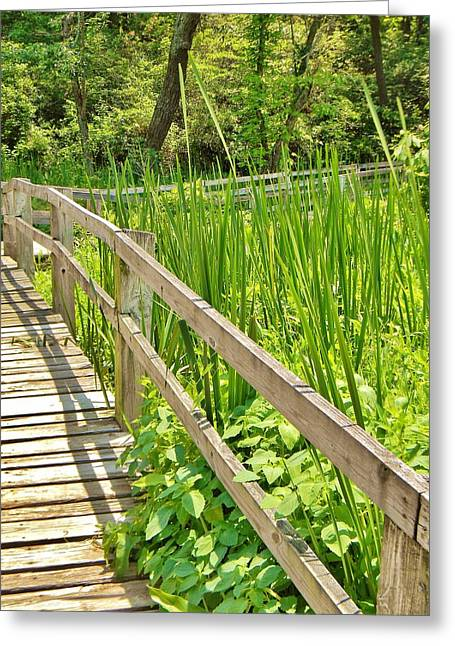 Greeting Card featuring the photograph Little Wooden Walking Bridge by Jean Goodwin Brooks