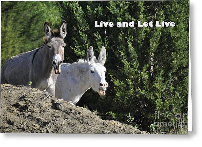 Live And Let Live Greeting Card by Cheryl McClure