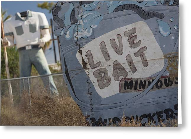Live Bait And The Man Greeting Card
