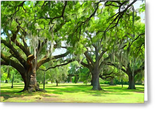 Live Oaks - Audubon Park New Orleeans Greeting Card