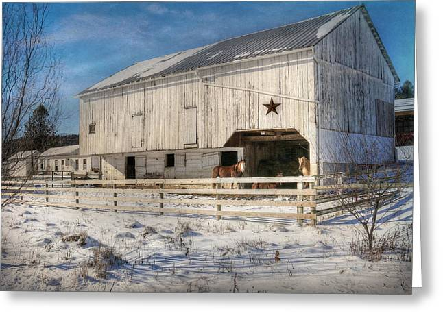 Liverpool Horse Barn Greeting Card by Lori Deiter