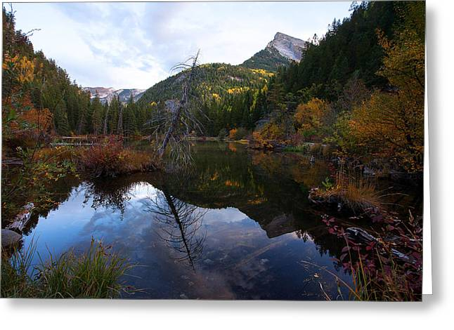 Greeting Card featuring the photograph Lizard Lake by Jim Garrison