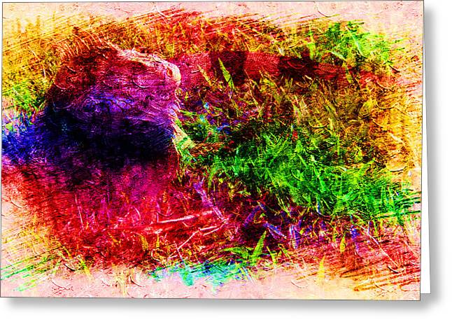 Lizard In Abstract Greeting Card