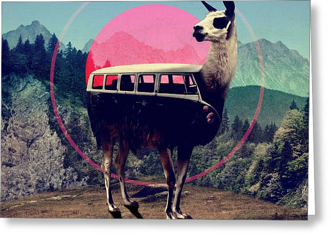 Llama Greeting Card by Ali Gulec