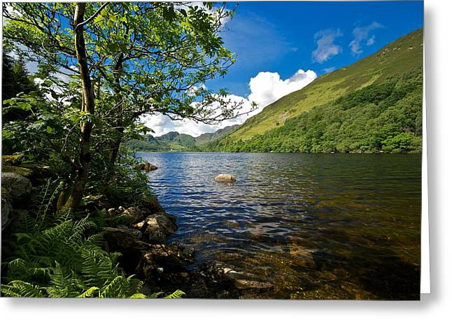 Greeting Card featuring the photograph Llyn Crafnant by Stephen Taylor