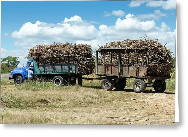 Loaded Sugar Cane Truck Cuba Greeting Card by Peter J. Raymond