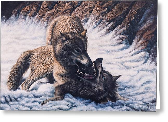 Lobos Greeting Card by Ricardo Chavez-Mendez