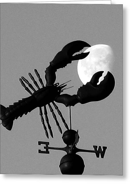 Lobster Over The Moon Greeting Card by Donnie Freeman